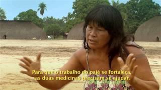 Índios Do Xingu Querem Associar Medicinas Ocidental E Indígena
