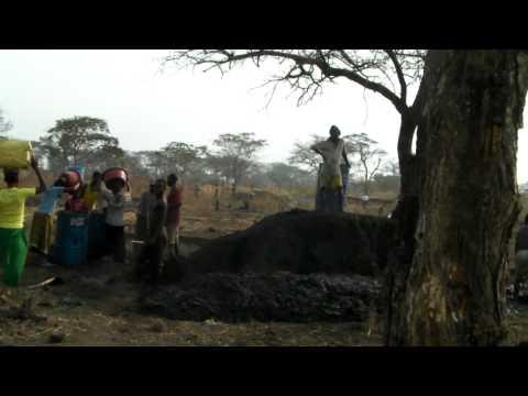 TRADIEX Project, SEBELE, FIZI, D.R.Congo