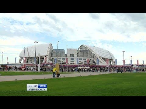 Сборные, побывавшие в Сочи, довольны городом и стадионом «Фишт»