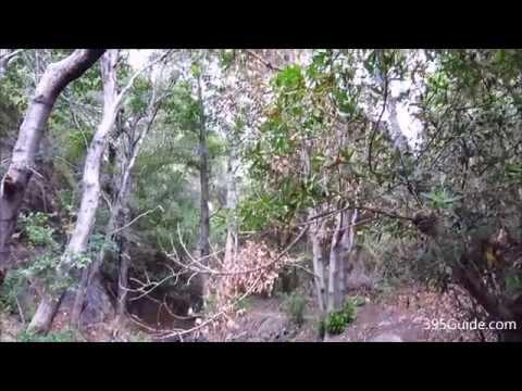 Hike to Falls Canyon Falls in Trabuco Canyon, Orange County, California
