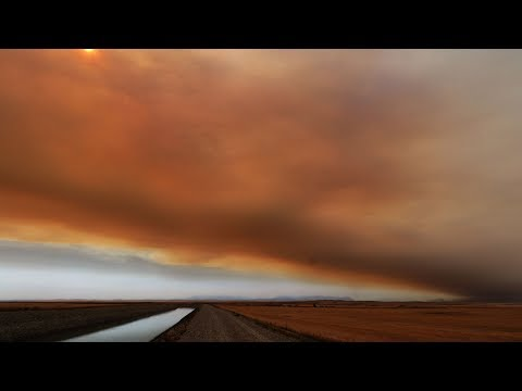 Crews battle fast-moving wildfire in Alberta