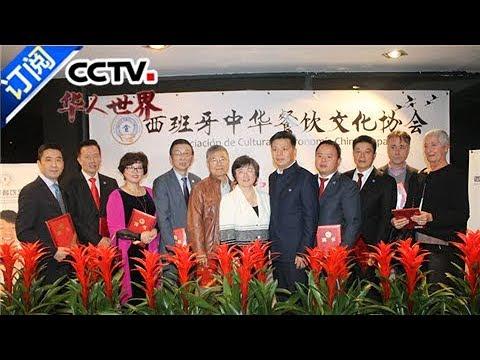 《华人世界》 20171215 | CCTV中文国际