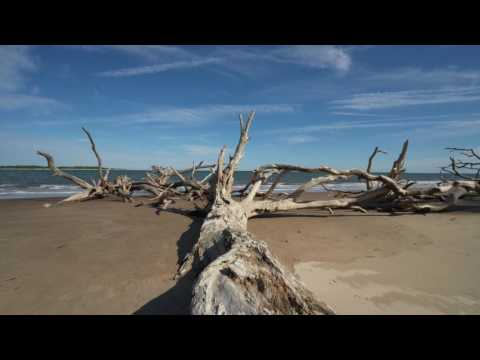 Florida Travel: Welcome to Atlantic Beach & the Talbot Island State Parks