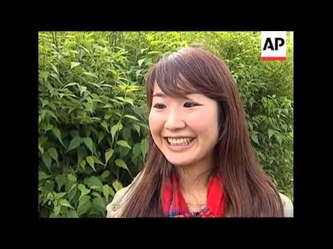 Beatrix Potter's Peter Rabbit Acquires Japanese Agent