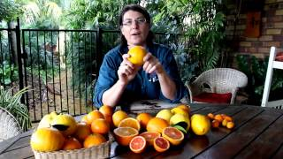 Citrus Trees - Hundreds of varieties but what is the difference?