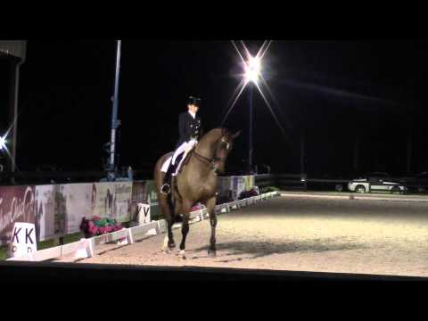 Warm Up Week 1 at the Adequan Global Dressage Festival in Wellington, Florida