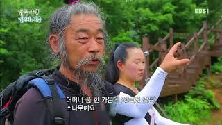 한국기행 - Korea travel_얼려라,여름 4부 지리산에서 오래오래_#001