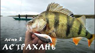 Астрахань. День 2. Окуни как Астраханские арбузы - ДИКИЕ ПОКЛЕВКИ :) | Рыбалка в Астрахани