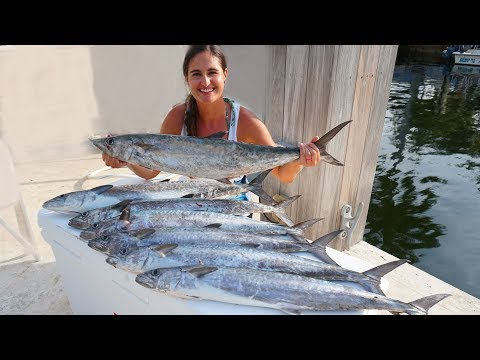 CRAZY LIMIT Of Kingfish!! CATCH And COOK!