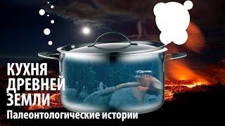 КАК ЗАРОДИЛАСЬ ЖИЗНЬ НА ЗЕМЛЕ? Ярослав Попов | Палеонтологические истории #003