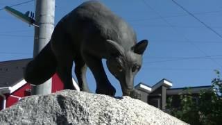 小平市コンシェルジェ「玉川上水」薬用植物園から平櫛田中彫刻美術館
