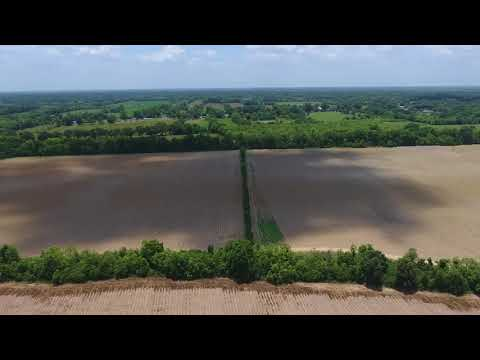 Farmland For Sale in Avoyelles Parish