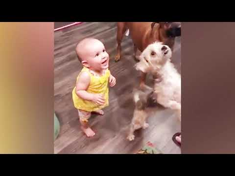 Funniest Couple Of Besties | Cute Baby Funny Moments | Fun and Cute