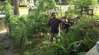 Permaculture Paradise:  Alex Ojeda