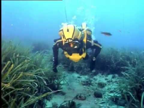El Mundo Submarino De Jacques Cousteau - El Gran Pulpo