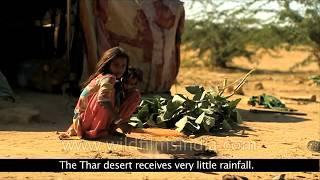 Thar : The Great Indian Desert
