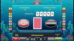 Dolphins Pearl Deluxe Echtgeld - Dolphins Pearl Deluxe online mit Echtgeld spielen