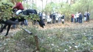 Hubertus 2011 - okiem kamery Puls Gniezna