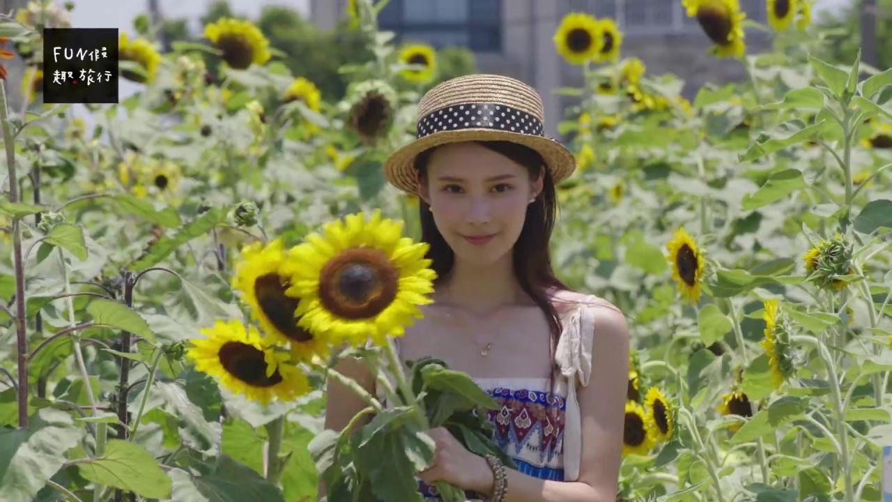 [桃園|觀音] 好玩好拍好好吃「向陽農場」滿滿向日葵花海IG美照必收 - YouTube