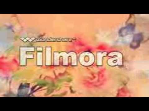 florida car insurance company
