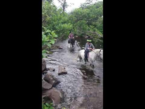 Wilder Ways Knoydart Adventure