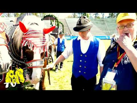 Bild: Pferd International 2016 - Interview mit Christian und seine Kaltblüter vom Schauprogramm