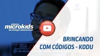 BRINCANDO COM CÓDIGOS - KODU