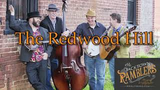 The Redwood Hill (360 video)