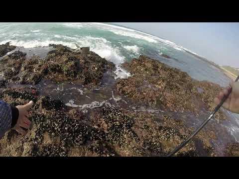Sheffield Beach Fishing -KZN North Coast
