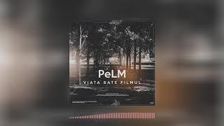 PeLM - Viata bate filmul
