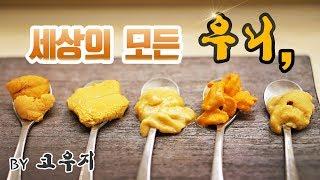 한국/미국/일본 성게알 본격 비교먹방 세상 모든 우니를…