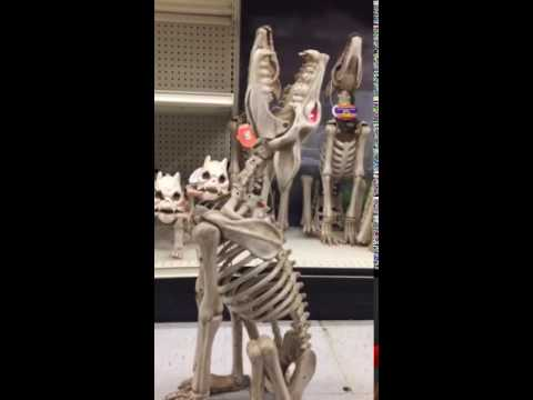 animated howling coyote wolf skeleton halloween decoration - Skeleton Halloween Decoration