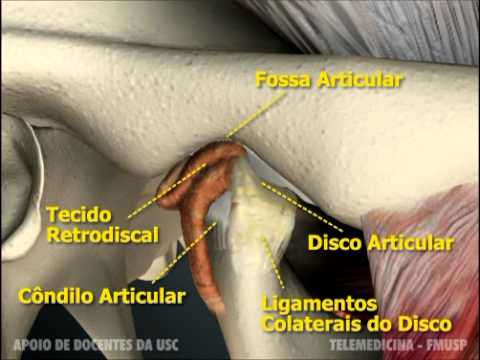 ATM - anatomia.mov - YouTube