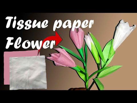 Tissue Paper Flower   Flower Craft   DIY
