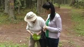 Лидия Новичихина, травовед-целитель: о целебных свойствах трав и растений