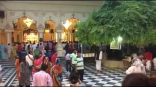 Вечер в Шри Кришна Баларам мандире