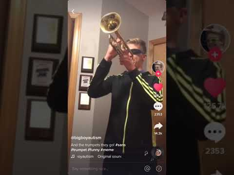 TikTok: And the trumpets they go...MEGALOVANIA
