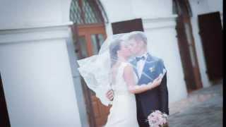 Милашевская Мария + Малец Антон : красивая свадьба в Минске (Беларусь) 2013