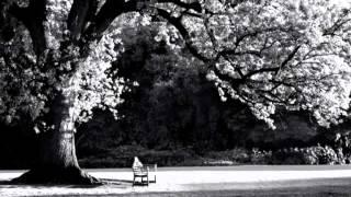 Nỗi nhớ (Phú Quang) - Thanh Lam