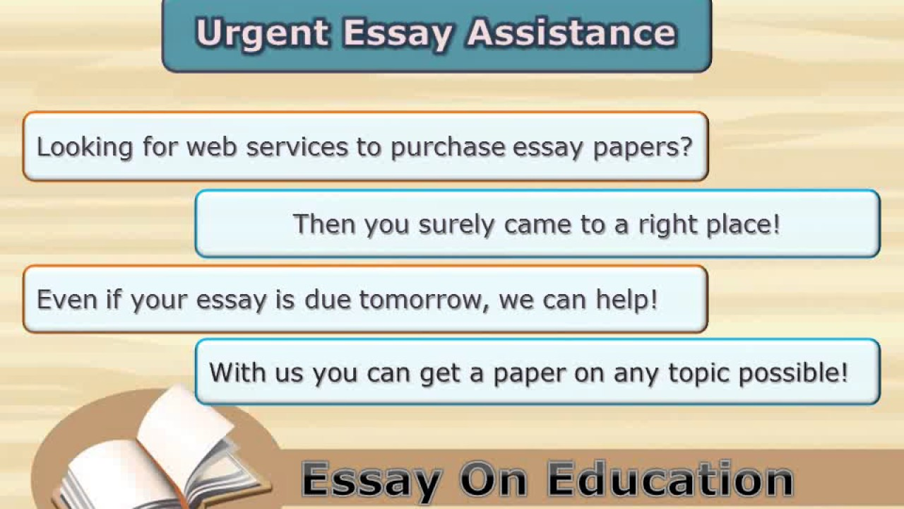 written essay on education Essay on the value of education this essay guide will help you write an essay on the meaning of education define what an education means first.