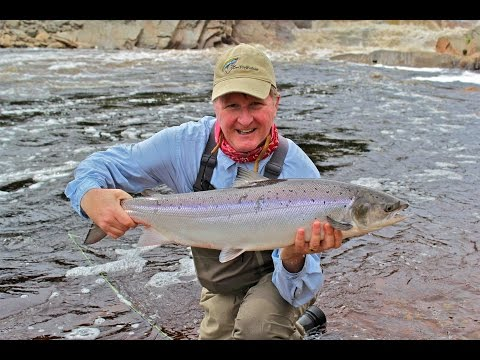 St. Lewis River Dry Fly Salmon | Labrador