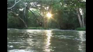 Mithe Ras se Bhari - (Shreenathji bhajan) - Live program by Surabhi parmar.