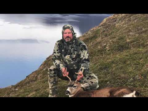 KODIAK ISLAND BLACKTAIL DEER HUNT- Fly-in To Kodiak Alaska