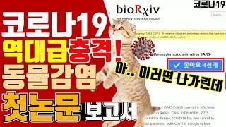 [코로나] - 동물감염 첫 실험 보고서!! 진짜 최악의…