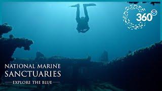Explore the Blue: 360° Shipwreck Alley
