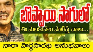 Natural Farming | Papaya Cultivation Basic Practices(Telugu) | Parthasarathi-2