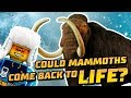 LEGO City Could Mammoths Come Back To Life LEGO City National Geographic mp3