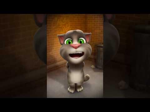 Tom cat singing titanic song