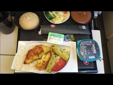 TURKISH AIRLINES LONG HAUL ECONOMY CLASS | ISTANBUL - WASHINGTON DC | AIRBUS A330-300