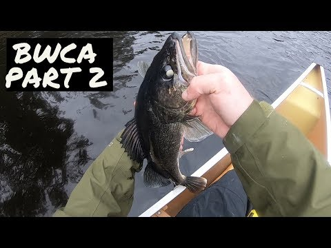 Boundary Waters Fishing: Walleye Paradise - Part 2 -